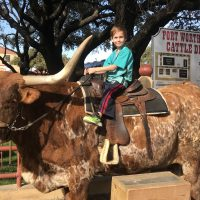 Longhorn ride in Dallas