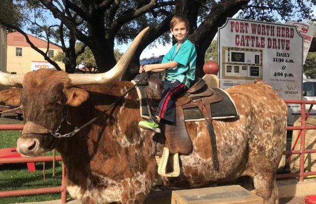 Longhorn ride in Dallas