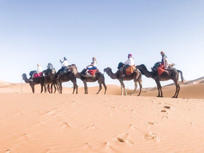 sahara desert camel rides